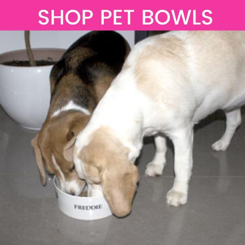 Shop Pet Bowls